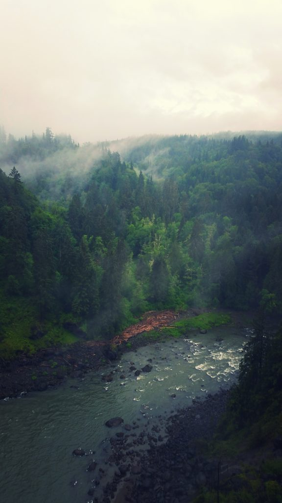 downstream from snoqualmie falls.jpg